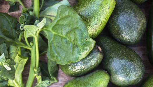 6 Healthy Foods to Help You Boost Your Immune System Naturally