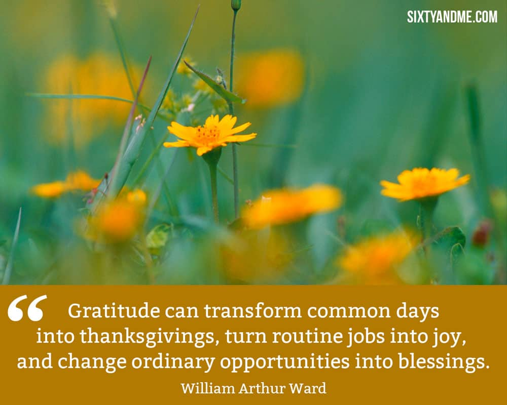 """Gratitude can transform common days into thanksgivings, turn routine jobs into joy, and change ordinary opportunities into blessings."" - William Arthur Ward"