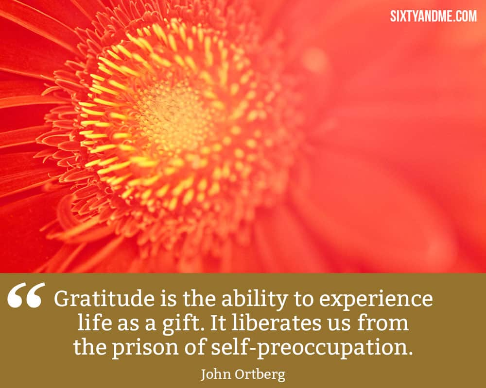 """Gratitude is the ability to experience life as a gift. It liberates us from the prison of self-preoccupation."" - John Ortberg"