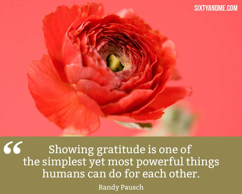 """Showing gratitude is one of the simplest yet most powerful things humans can do for each other."" - Randy Pausch"