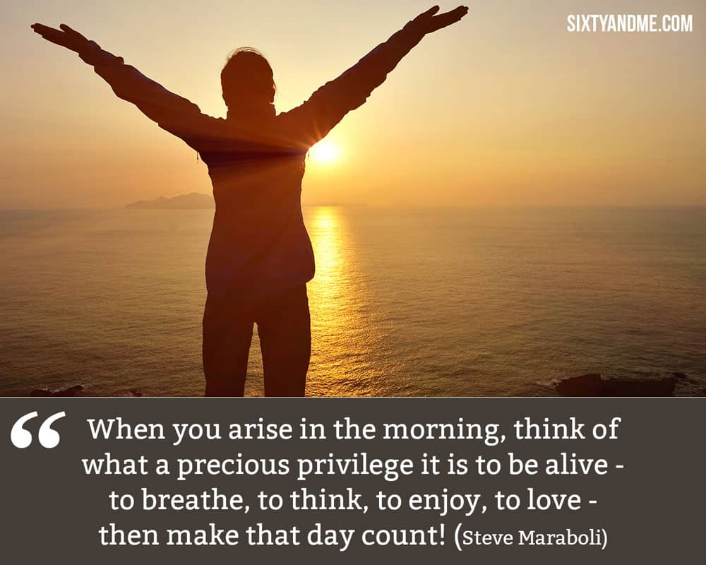 """When you arise in the morning, think of what a precious privilege it is to be alive—to breathe, to think, to enjoy, to love—then make that day count!"" - Steve Maraboli"