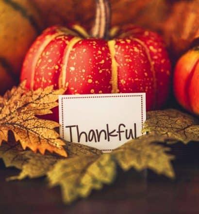 Gratitude on Thanksgiving Day