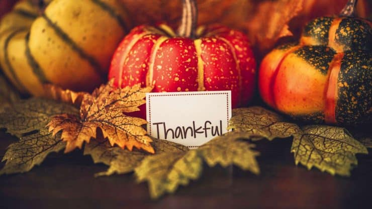 Gratitude on Thanksgiving Day