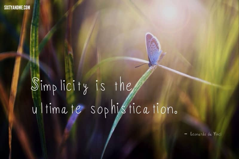 Leonardo de Vinci - Simplicity is the ultimate sophistication.