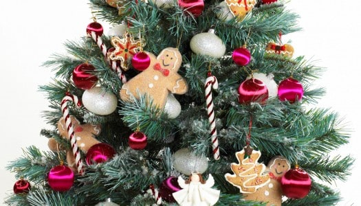 Are You Going with an Artificial or Natural Christmas Tree this Year? (Video)