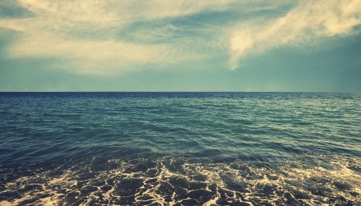 Is Salt Water Really the Cure for All Life's Problems?