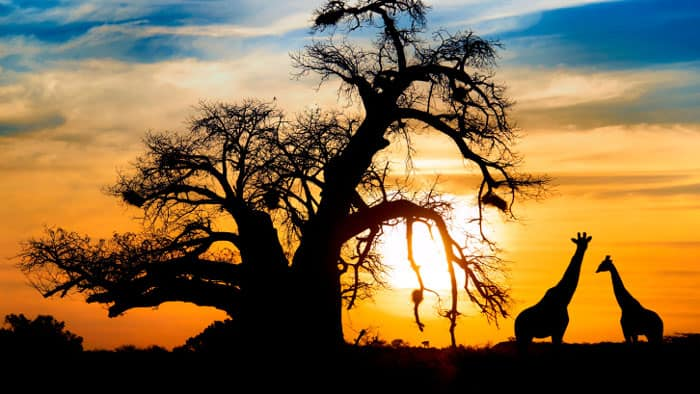 6 Travel Destinations for Truly Adventurous Baby Boomers - South Africa