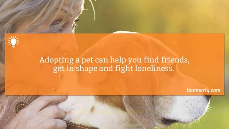 Getting a Pet Can Help You Find Friends and Beat Loneliness