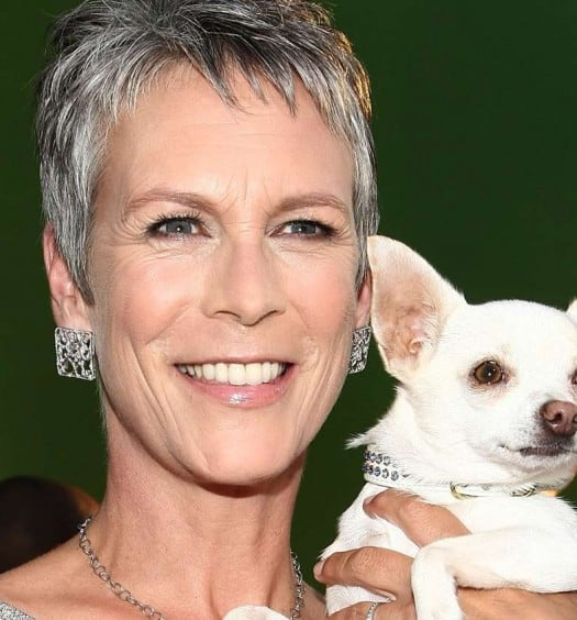 Sixty and Me - This Jamie Lee Curtis Quote About Aging is Right on the Money