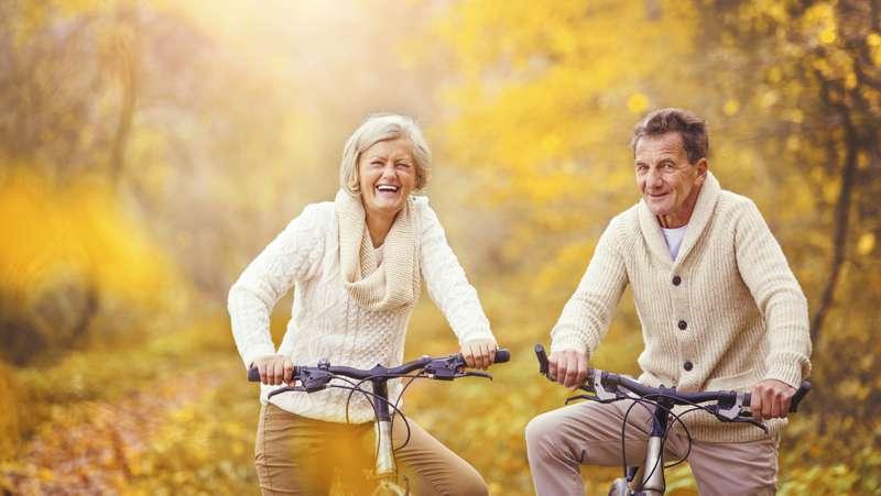 bikes for seniors