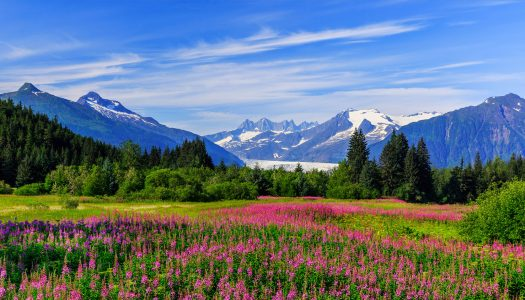 How My Alaskan Vacation Gave Me a New Perspective on Life and the World