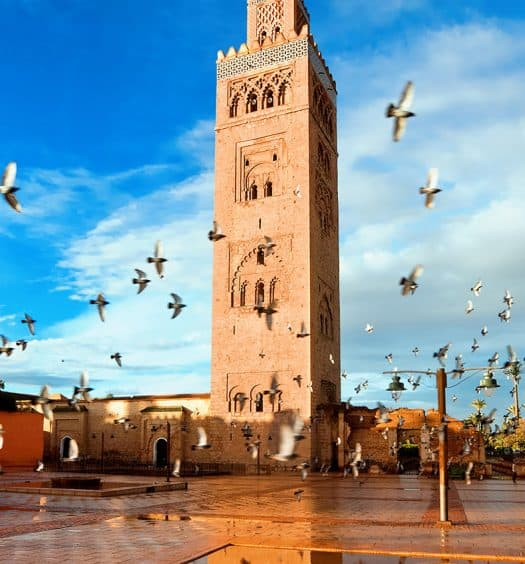 Senior Tours Travel to Morocco