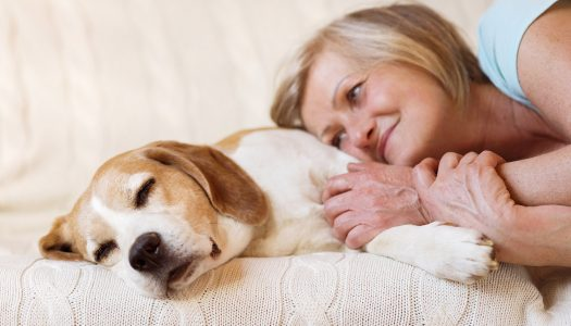 Losing a Pet After 60 is Especially Hard. Here's How to Recover