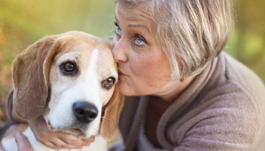 Hurtful Things People Say When You Lose a Pet – and How You Can Respond