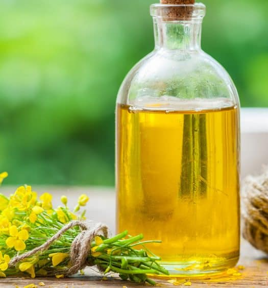 Is-Canola-Oil-Bad