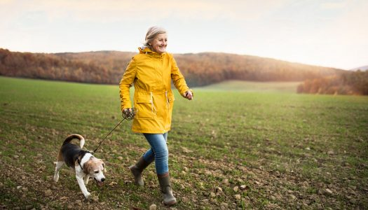 5 Reasons for Taking Up the Walking Life in Retirement