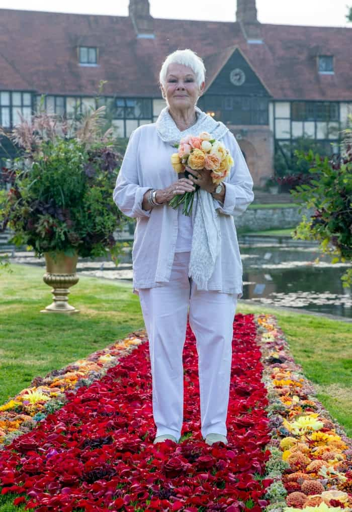 Judi Dench Shows Off Classic Look at Flower Show