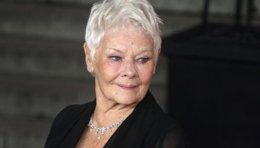 You'll Never Believe What Someone Said to Judi Dench Early in Her Career