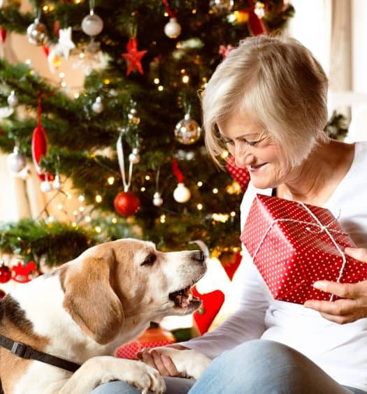 Perfect-Christmas-Gift-for-a-Caregiver