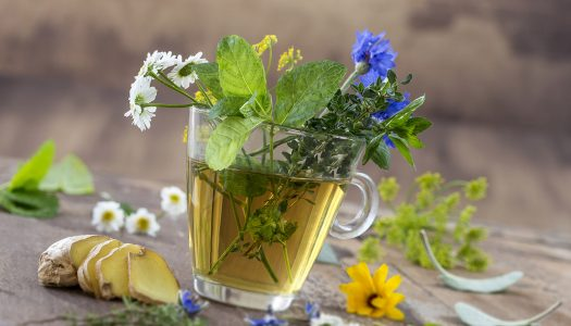 Rejuvenate Your Skin with Herbal Teas: Beauty-Boosting Benefits for Mature Women
