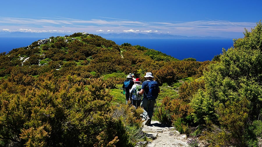 Walk Your Way to Health and Mental Wellbeing